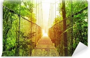 Arenal Hanging Bridges park of Costa Rica Vinyl Wall Mural