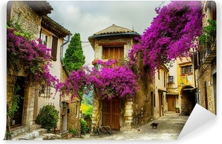 art beautiful old town of Provence Vinyl Wall Mural