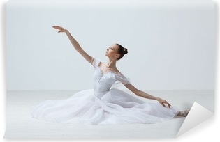 ballet dancer Vinyl Wall Mural