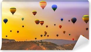 balloons CappadociaTurkey. Vinyl Wall Mural