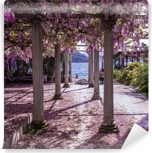 Beautiful front yard with pillars and wisteria flowers Vinyl Wall Mural