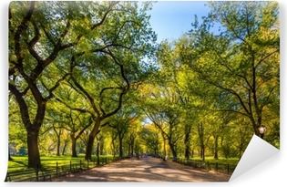 Beautiful park in beautiful city..Central Park. The Mall area in Central Park at autumn., New York City, USA Vinyl Wall Mural