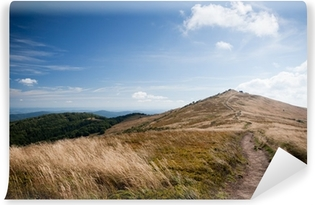 Bieszczady mountains in south east Poland Vinyl Wall Mural