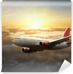 Big aircraft at sunset Vinyl Wall Mural