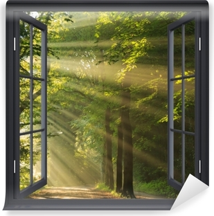 Black window open - rays of the sun in the forest Vinyl Wall Mural