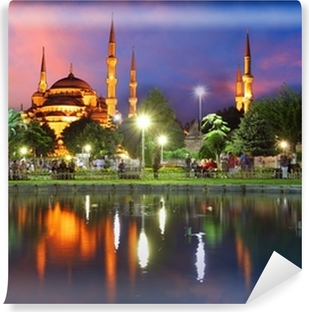 Blue mosque in Istanbul - Turkey Vinyl Wall Mural