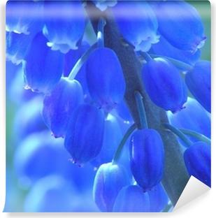 blue pearl hyacinth Vinyl Wall Mural