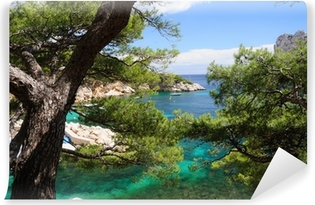 Calanques of Port Pin in Cassis in France Vinyl Wall Mural