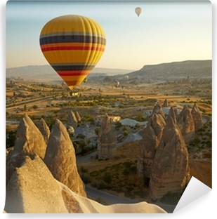 Cappadocia. Turkey Vinyl Wall Mural