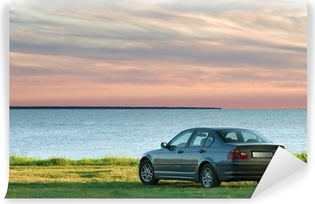 car and sea landscape Vinyl Wall Mural