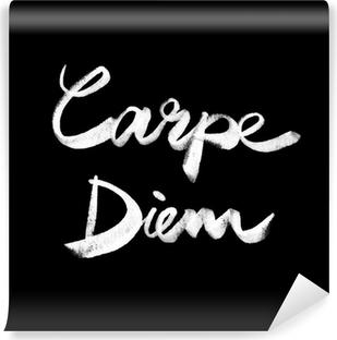 Carpe diem. Handwritten quote Vinyl Wall Mural