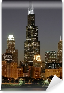 chicago cityscape and sears tower Vinyl Wall Mural