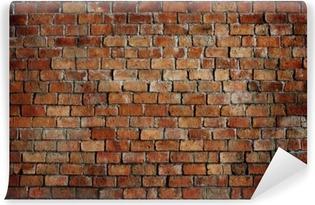 Classic Beautiful Textured Brick Wall Vinyl Wall Mural