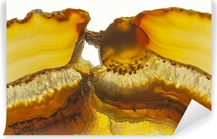 Close up of a Slice Agate Gemstone Vinyl Wall Mural
