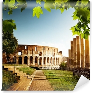Colosseum in Rome, Italy Vinyl Wall Mural