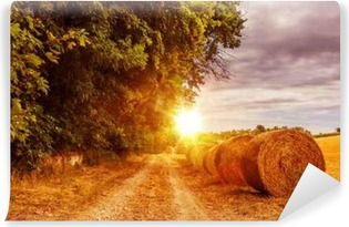 Countryside Summer Road Vinyl Wall Mural