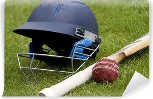 Cricket ball, bat and helmet on green grass of cricket pitch Vinyl Wall Mural