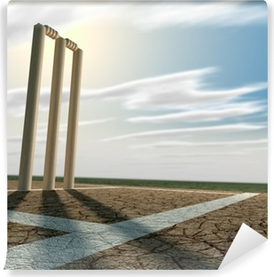 Cricket Pitch And Wickets Perspective Vinyl Wall Mural
