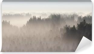 Dense pine forest in morning mist. Vinyl Wall Mural