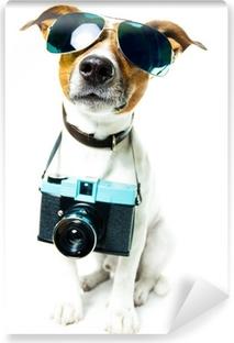 dog photo camera Vinyl Wall Mural