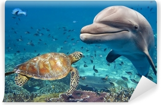 dolphin and turtle underwater on reef Vinyl Wall Mural