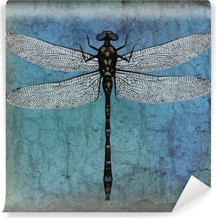 Dragonfly grunge background Vinyl Wall Mural