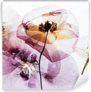 dry poppies Vinyl Wall Mural
