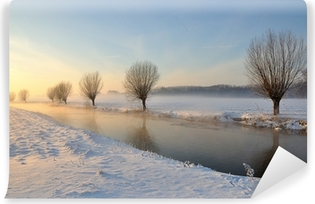 Dutch winter landscape with snow and low sun Vinyl Wall Mural