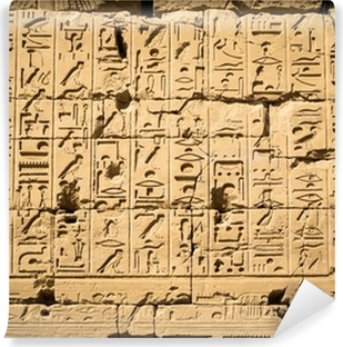 egyptian hieroglyphs Wall Mural Pixers We live to change