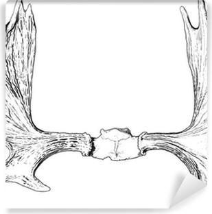 elk antlers Vinyl Wall Mural