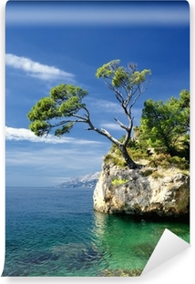 Famous beautiful rock with pine trees in Brela in Croatia Vinyl Wall Mural