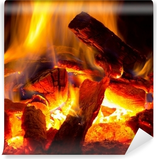 flame of fire Vinyl Wall Mural