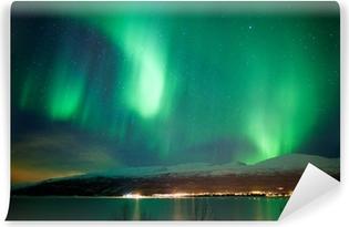 Green aurora borealis dancing in the sky Vinyl Wall Mural