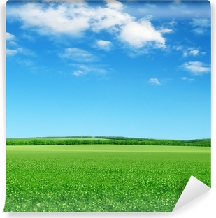 green field and blue sky Vinyl Wall Mural