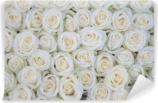 group of white roses after a rainshower Vinyl Wall Mural