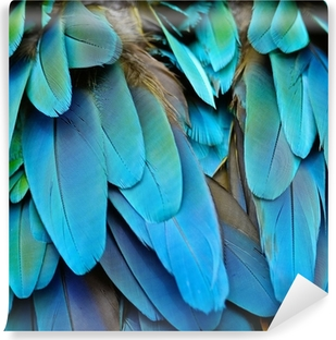 Harlequin Macaw feathers Vinyl Wall Mural
