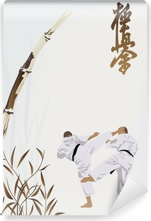 karate occupations Vinyl Wall Mural