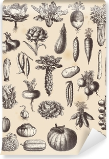 large collection of vegetables Vinyl Wall Mural