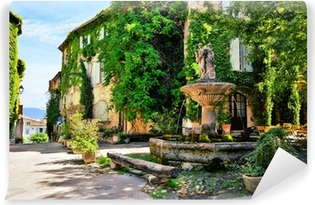 Leafy town square with fountain in a picturesque village in Provence, France Vinyl Wall Mural