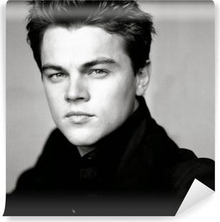 Leonardo DiCaprio Vinyl Wall Mural