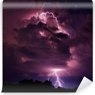 Lightning strike Vinyl Wall Mural
