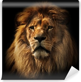 Lion portrait with rich mane on black Vinyl Wall Mural