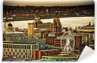 Liverpool Wall Murals • Pixers® • We live to change