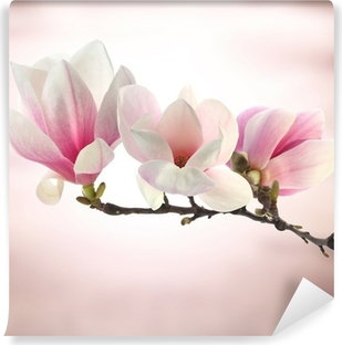 magnolia Vinyl Wall Mural