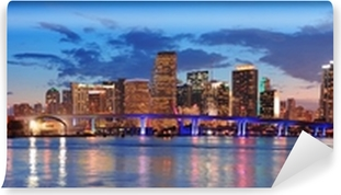 Miami night scene Vinyl Wall Mural