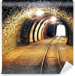 Mine gold underground tunnel railroad Vinyl Wall Mural