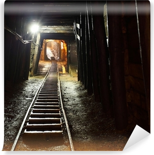 Mine railway in undergroud. Vinyl Wall Mural
