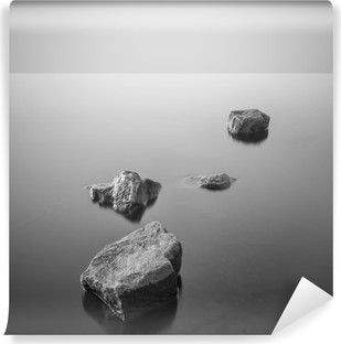 Minimalist misty landscape. Black and white. Vinyl Wall Mural
