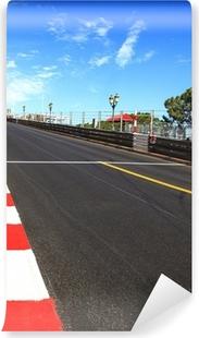 Monaco, Monte Carlo. Race asphalt, Grand Prix circuit Vinyl Wall Mural