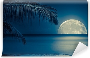 Moon reflected on the water of a tropical beach Vinyl Wall Mural